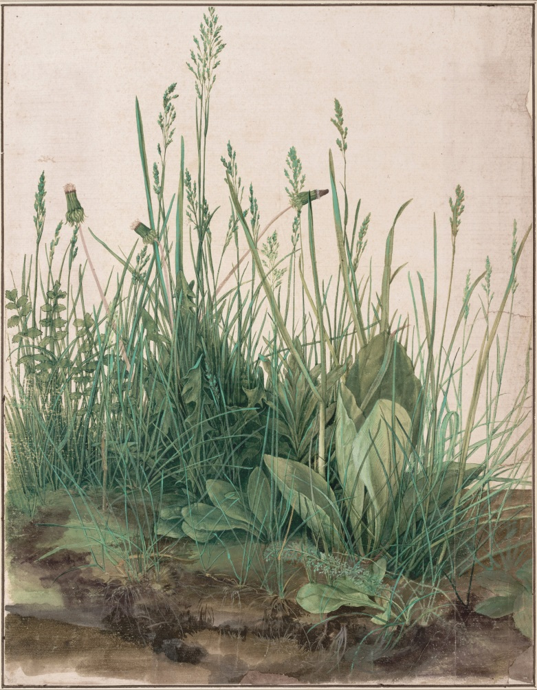 The Large Piece of Turf(1503)